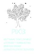PIXI3 - we create software